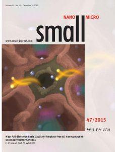 SMALL_11(47)_U1.pdf