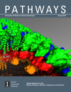 04102015 Pathways FINAL_Interactive