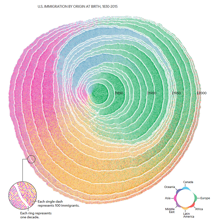 U.S. immigration represented by concentric rings like a tree, where outermost ring is the most recent, with colors denoting immigrants' origin primarily by continent