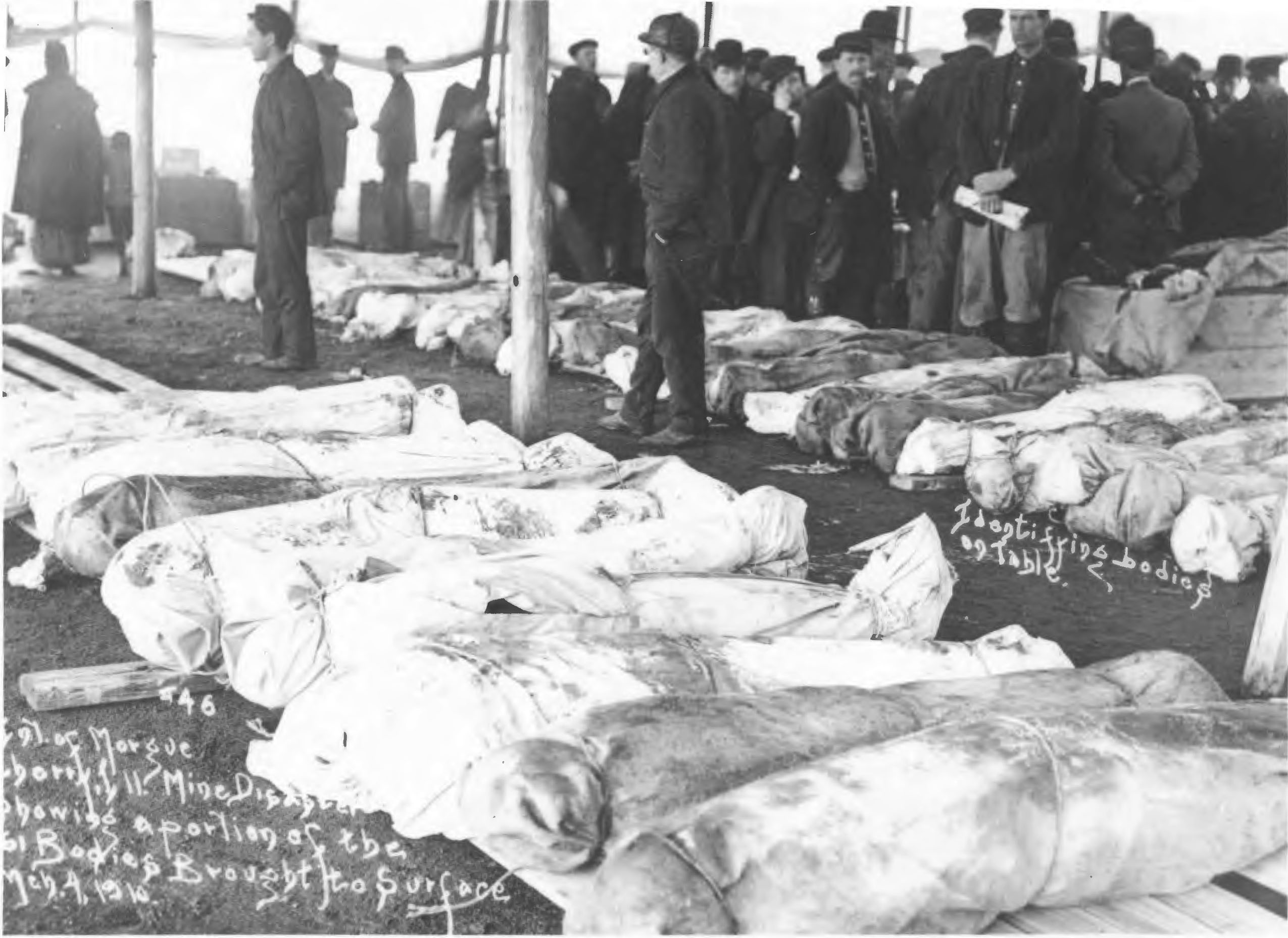 Photograph of bodies being identified after Cherry Mine Disaster, 1909.