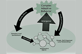 graphical chart depicting adaptive behavior