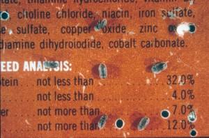 Courtesy of Entomology Dept