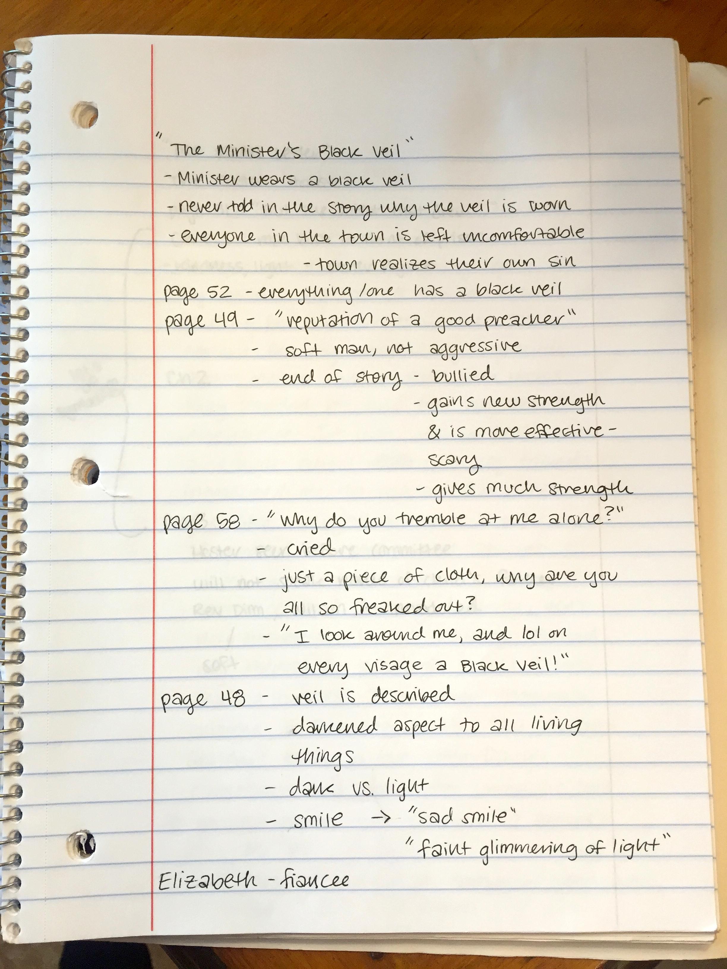 essay on my diary