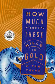 cover art for How Much of These Hills is Gold