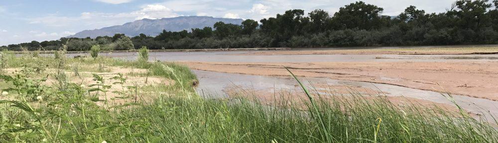 Wetland Ecology  and Restoration