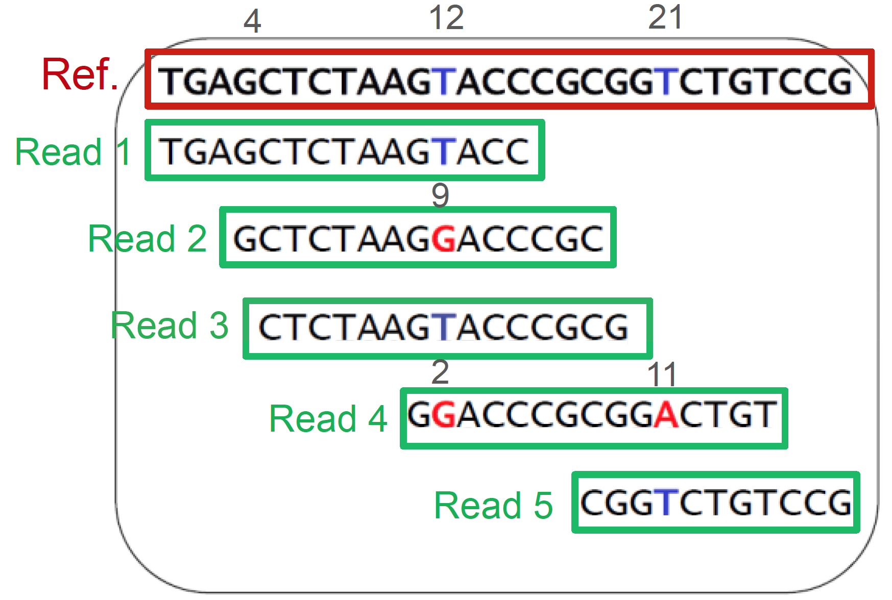 The key idea is to provide a list of references for metagenomic reads, which inherently lack references. Subsequently, we encode only the small difference between the reference and our reads to achieve high compression rate.
