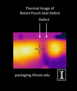 Defect Thermal Image 2a
