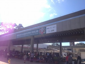 Family farmer's market in Brasilia's wholesale market (CEASA): a governmental action to include small holders farmers into the market / Gilmar Henz