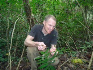 Cory Whitney with medicinal Millettia species.