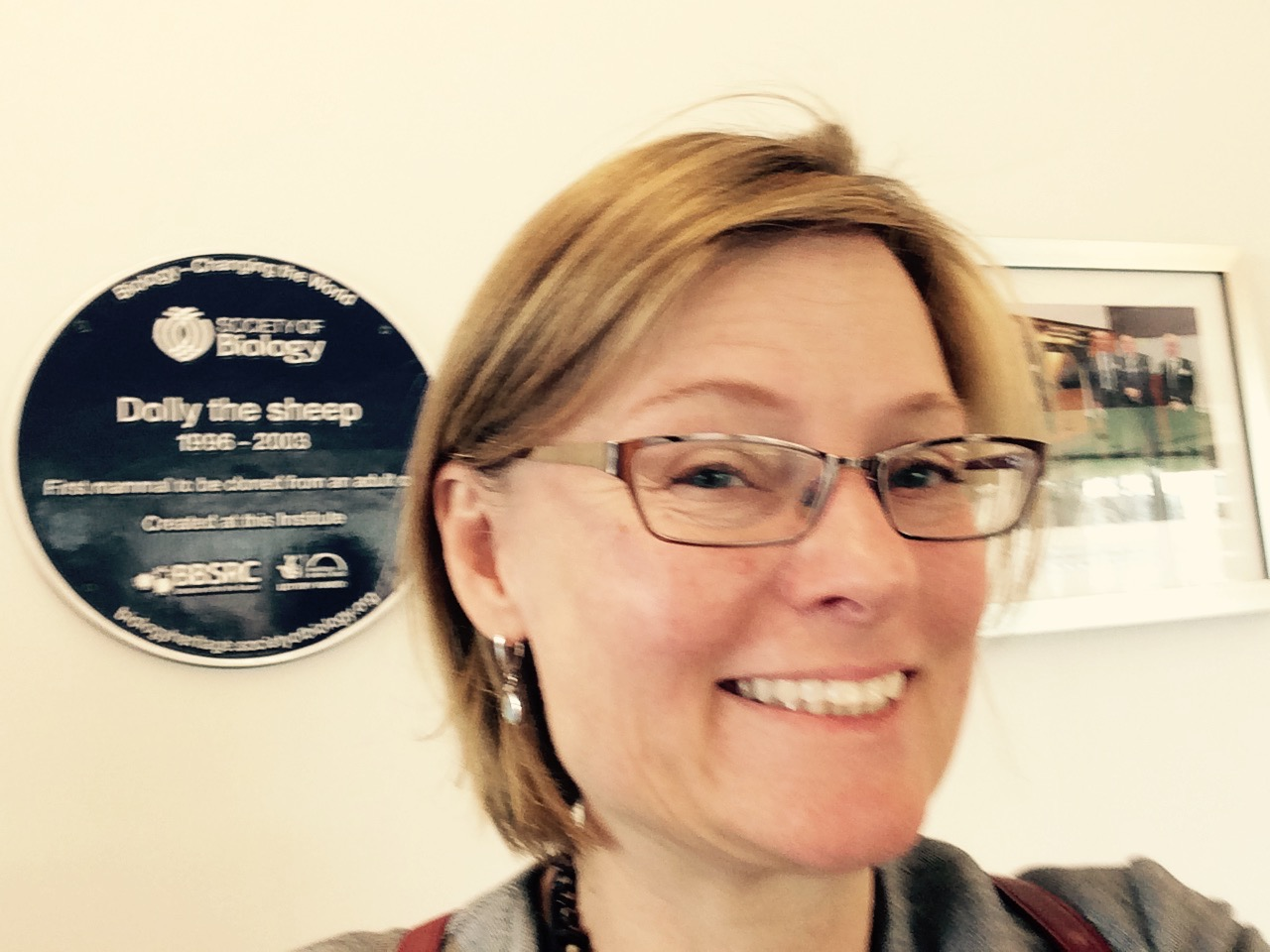 Shisler Lab | Asking questions about fundamental virus biology