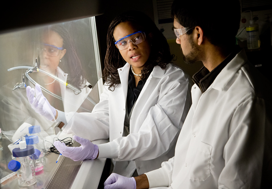 Laboratory of Princess Imoukhuede, professor of bioengineering,