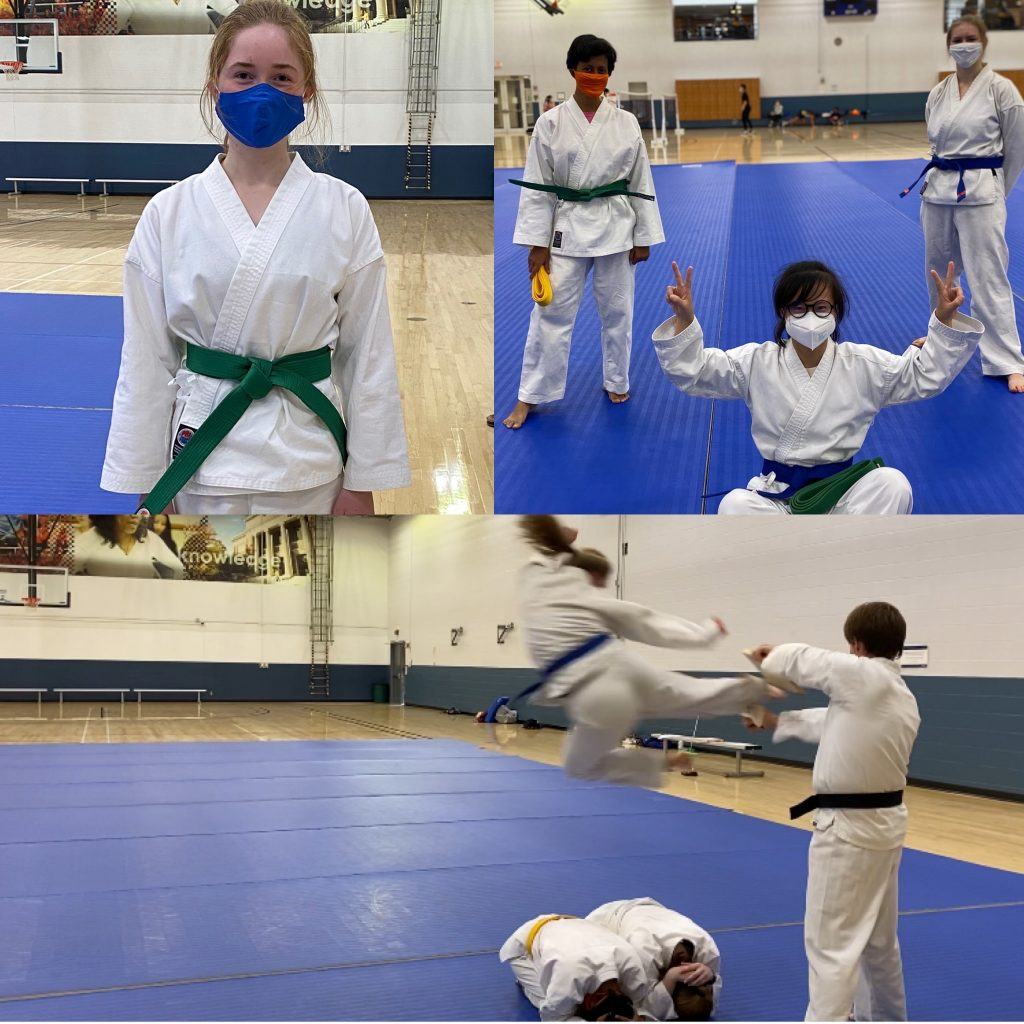 Collage of students practicing martial arts