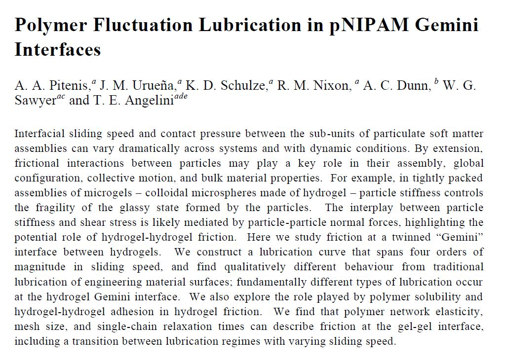 2014-09-03 Polymer Fluctuation NiPAAm paper preview
