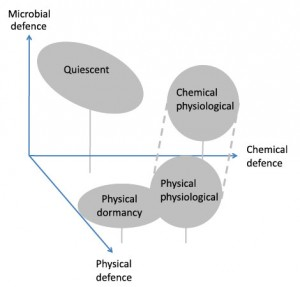 Research-Schematic
