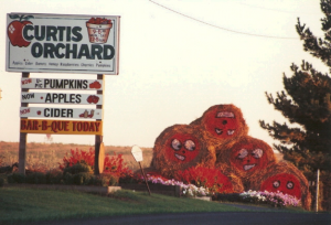 Photo of Curtis Orchard sign
