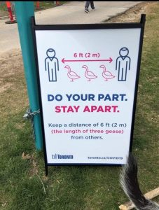 "Photo of a sign from Toronto, Canada that reads ""Do your part. Stay apart. Keep a distance of 6 ftt (2 m) (the length of three geese) from others."""