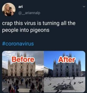 """crap this virus is turning all the people into pigeons #coronavirus"" [images of a plaza: 'before"" photo shows large crowd of people, 'after' photo shows only pigeons]"