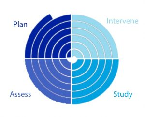 A diagram representing the transdisciplinary action research process. A circle of concentric lines is broken into four quadrants of different colors: labelled plan, assess, intervene, and study.