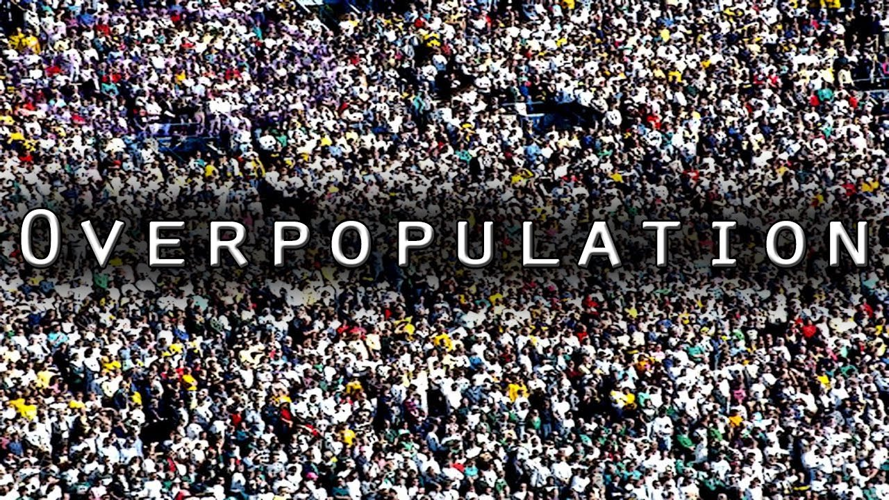 essay iii reflection zhe s site university of illinois at  overpopulation image