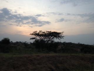 Day 4 Uganda – Isingiro District (Gabi)