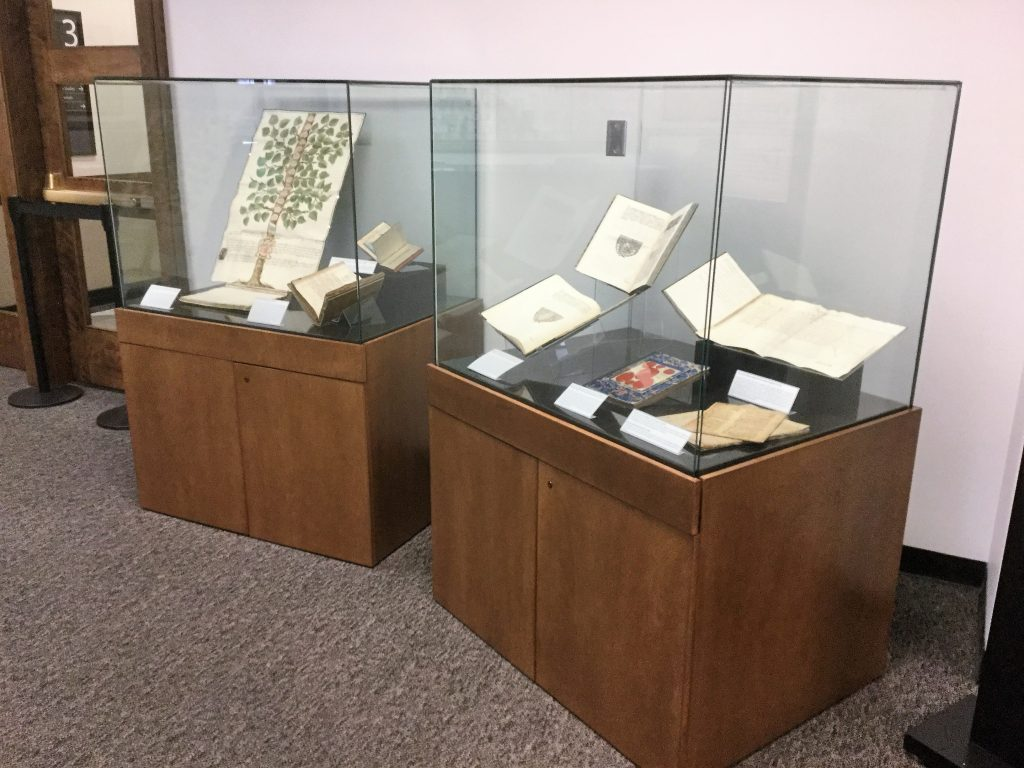 Two boxes in a pop-up exhibit highlight unusual bindings from the Cavagna collection.