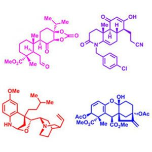 Diagrams - Synthesis of complex and diverse compounds