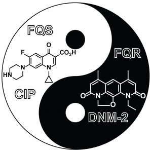 Ying-Yang style diagram showing a compound called DNM-2, and another CIP.