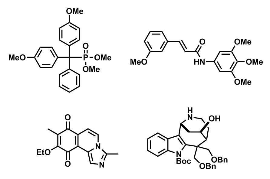 Diagram showing four other anticancer compounds that we have identified.