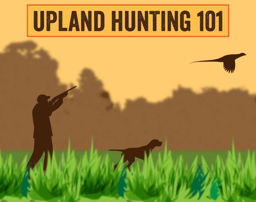 Upland Hunting 101