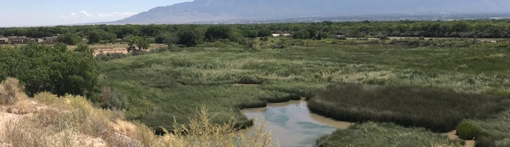 Wetland Ecology  and Restoration