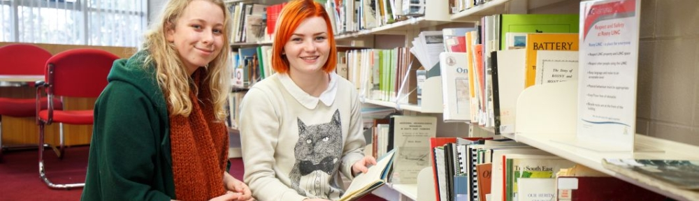 Why Libraries, Why Librarians?